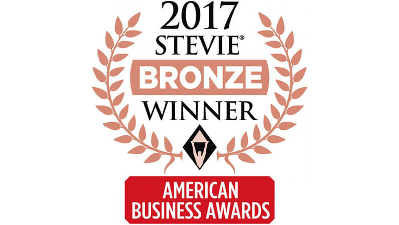 MELT Named Marketing/Advertising Agency of the Year In 2017 American Business Awards
